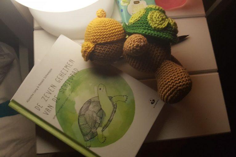 7 geheimen van de schildpad